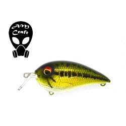 Crankbait shallow one...